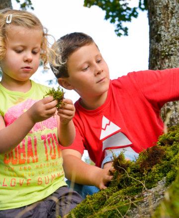 Enfnats jouant avec la mousse en forêt - Annecy Mountains